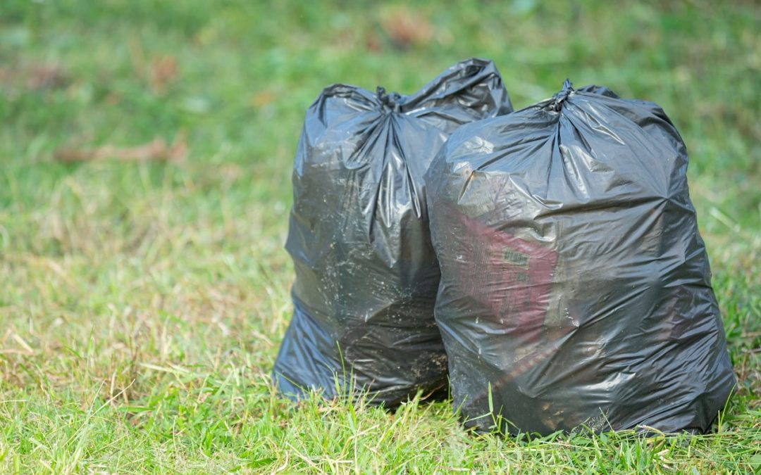 Why Waste Management is Necessary in Tampa